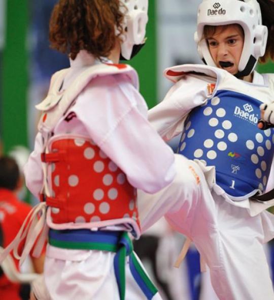 Curso Taekwondo